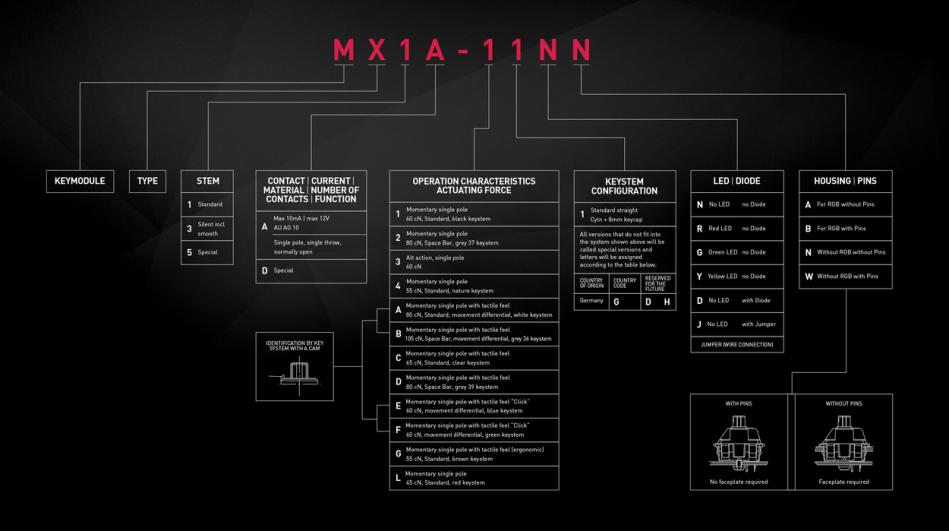 mxEN-1250x699