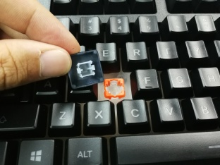 SteelSeries Apex 150 - Keycaps-Switch - No Light